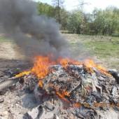 Płonące ognisko - fot. Straż Miejska w Zgierzu
