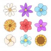 kolorowe kwiatki - grafika MOK