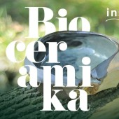 """Wystawa """"Bioceramika - inspiracja naturą"""""""
