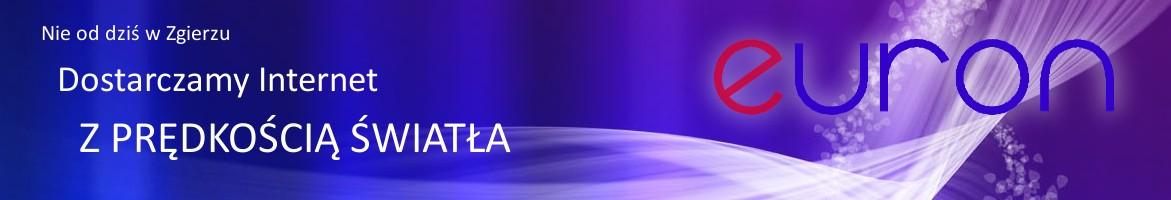 strona firmy EURON