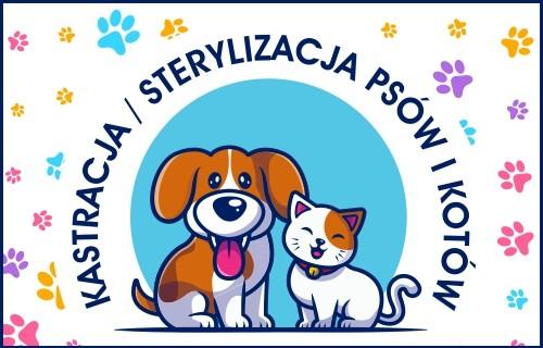 Przejdź do artykułu Darmowa kastracja/sterylizacja psów i kotów