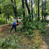 Połamane gałęzie drzew po burzy w parku miejskim